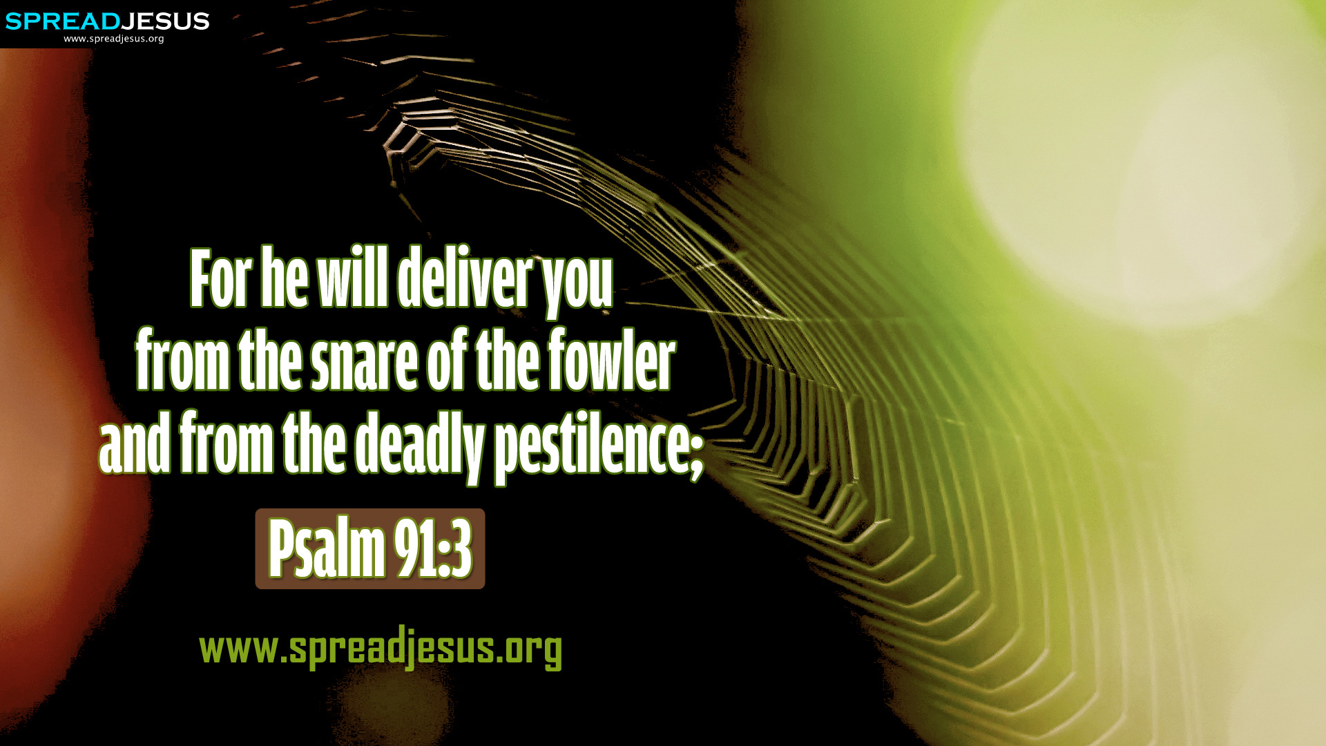 Psalm 913 BIBLE QUOTES HD WALLPAPERS FREE DOWNLOAD For he will 1920x1080