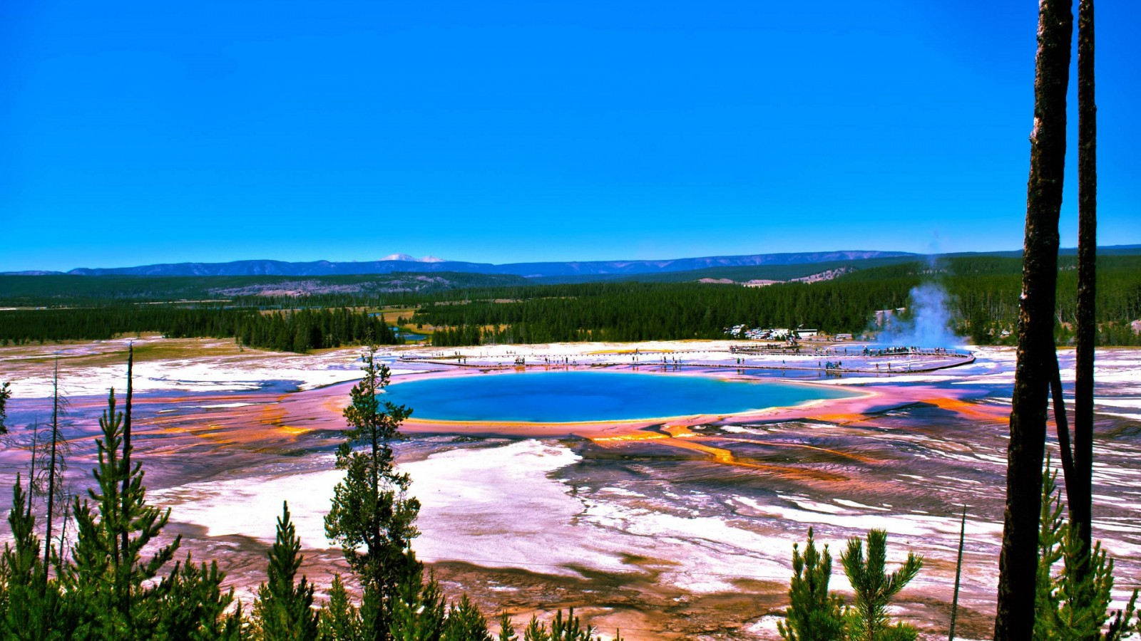 Spring Yellowstone National Park Widescreen and Full HD Wallpapers 1600x900