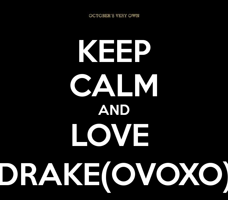 Drake Owl iPhone Wallpaper - WallpaperSafari