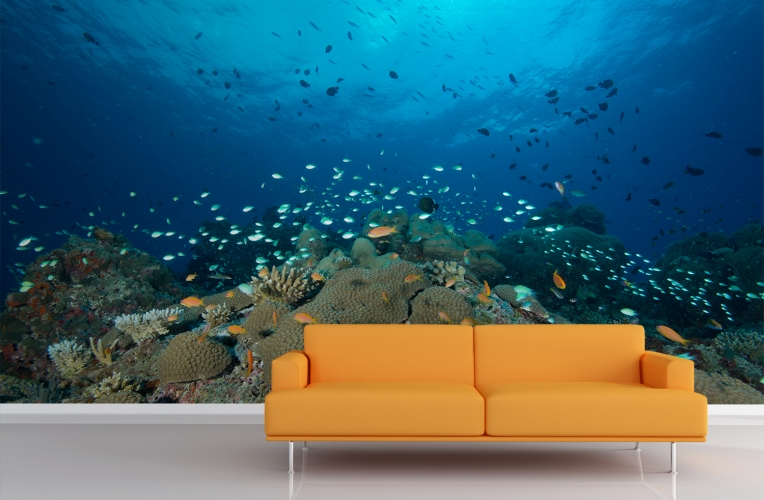 dark coral reef wall mural custom made to fit your wall size superb 764x500