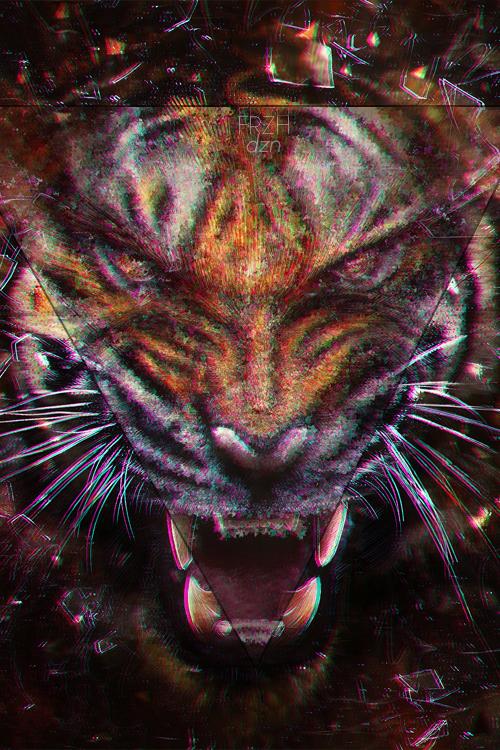 Iphone Tiger Wallpaper Frzhdzn 500x750