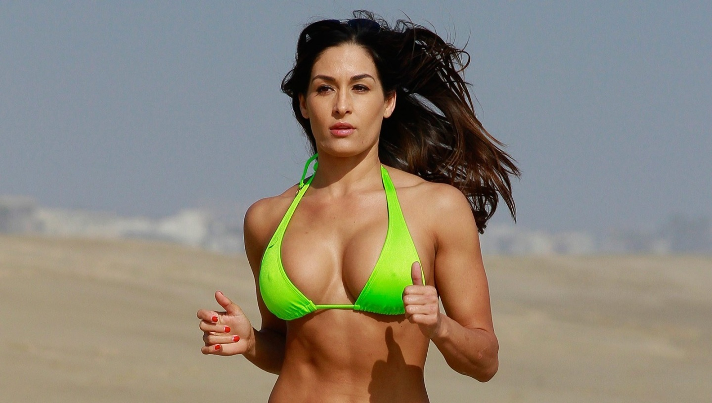 Wwe brie bella wallpaper wallpapersafari - Diva nikki bella ...