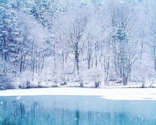 Winter images Beautiful Winter wallpaper and background photos 500x401