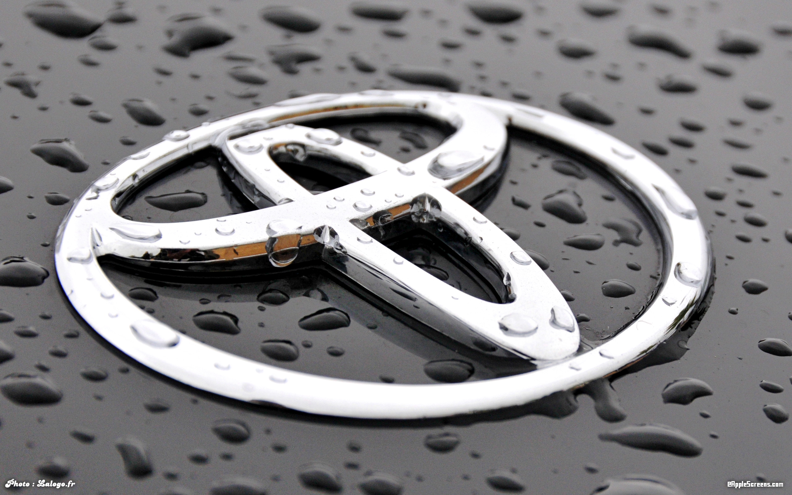 Toyota Logo Wallpaper   HD Wallpapers 2560x1600