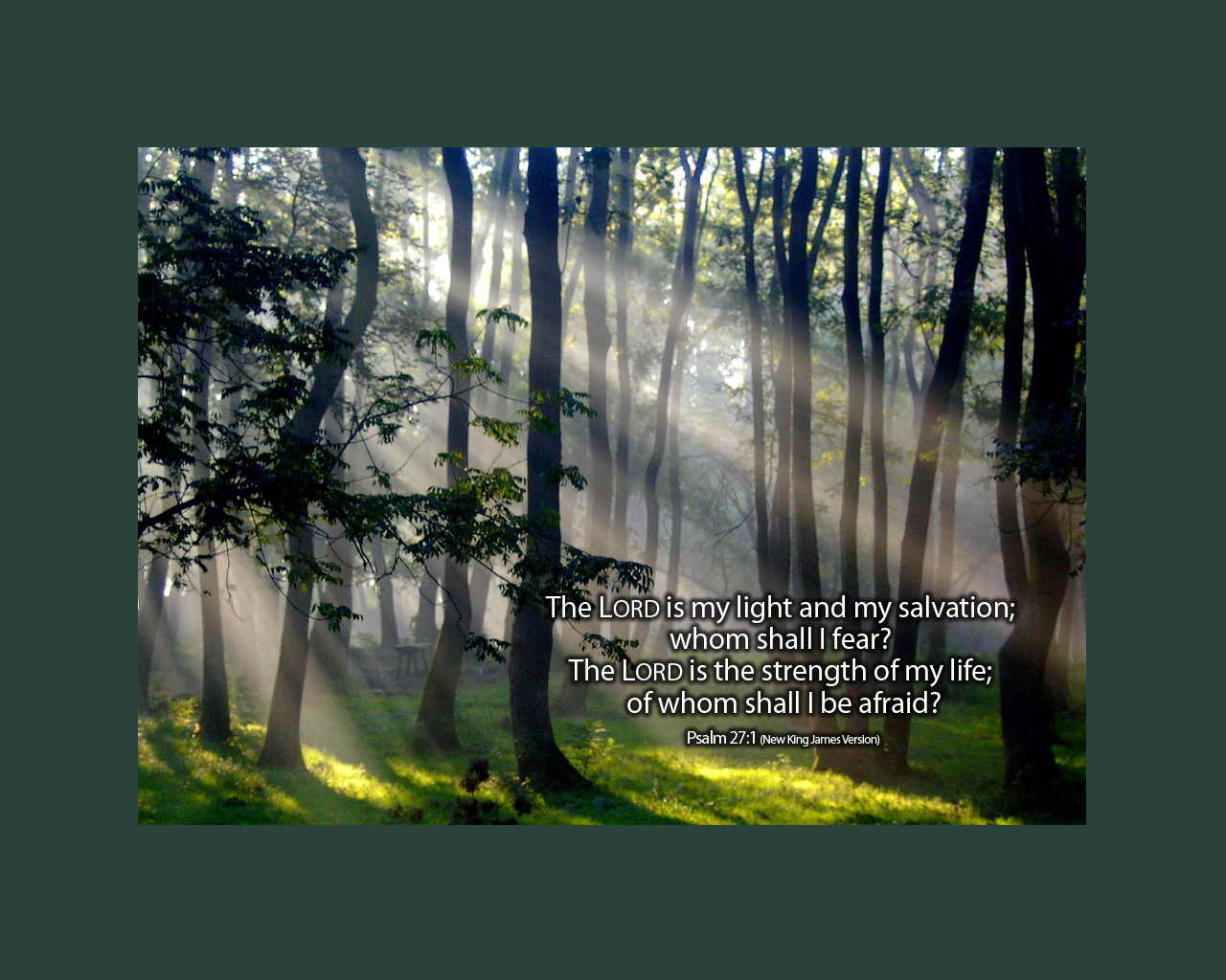 john year a responsorial psalm study psalm a psalm of 1280x1024