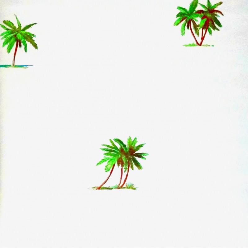 Wallpaper Tropical Palm Tree Wallpaper 800x800