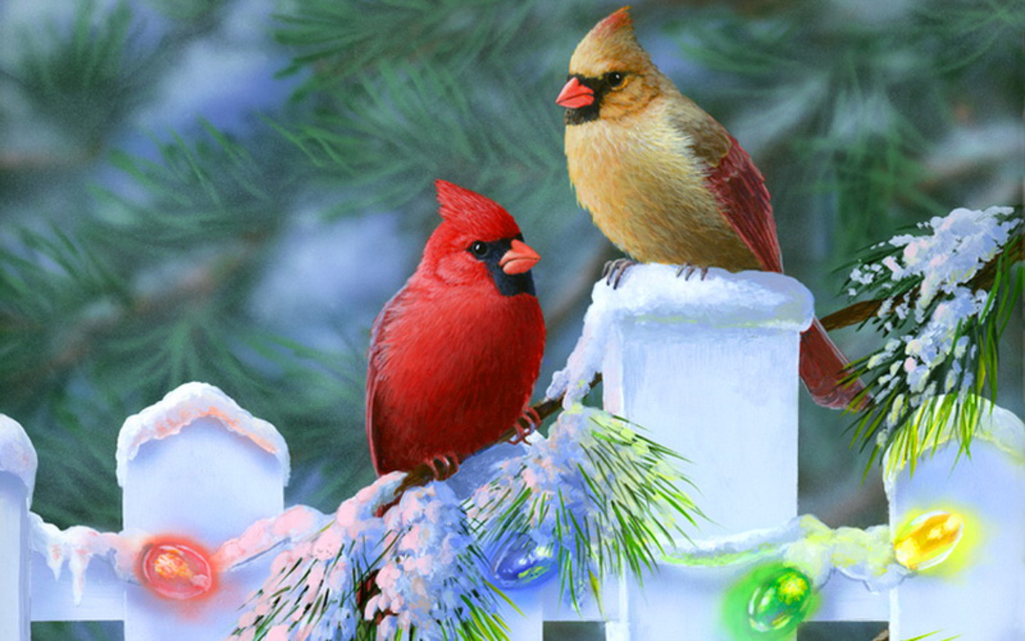 Christmas cardinals Wallpaper photo and wallpaper All 1440x900