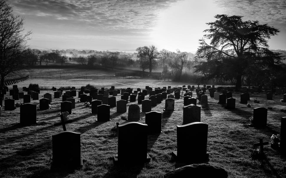 Cemetery BW Tombstones Graveyard Trees HD wallpaper nature and 970x606