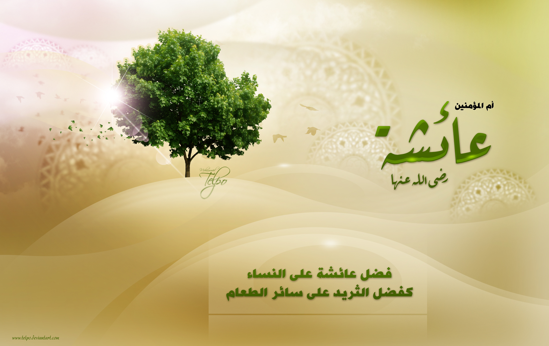 Aisha Mother of the Believers   Wallpaper Alhabib Islamic Style 1900x1200