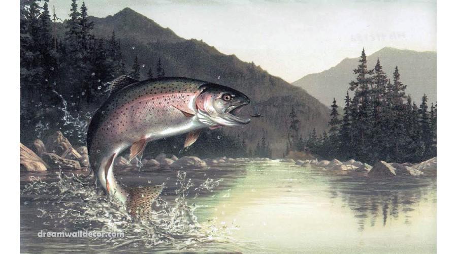 Home Grey Lake Mountain Fish Wallpaper Border 900x500