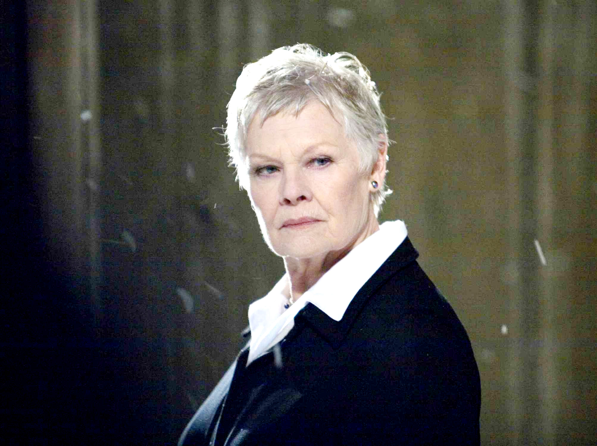 Judi Dench   Photo Set Image Wide Top 2006x1500