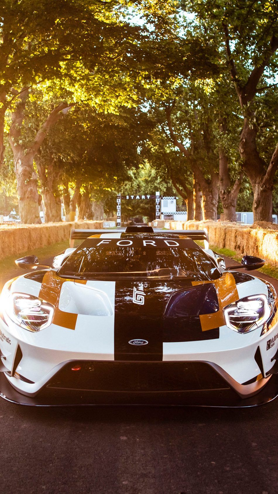 Ford GT MK II 2019 Car Wallpapers Ford gt Cars Cars 950x1689