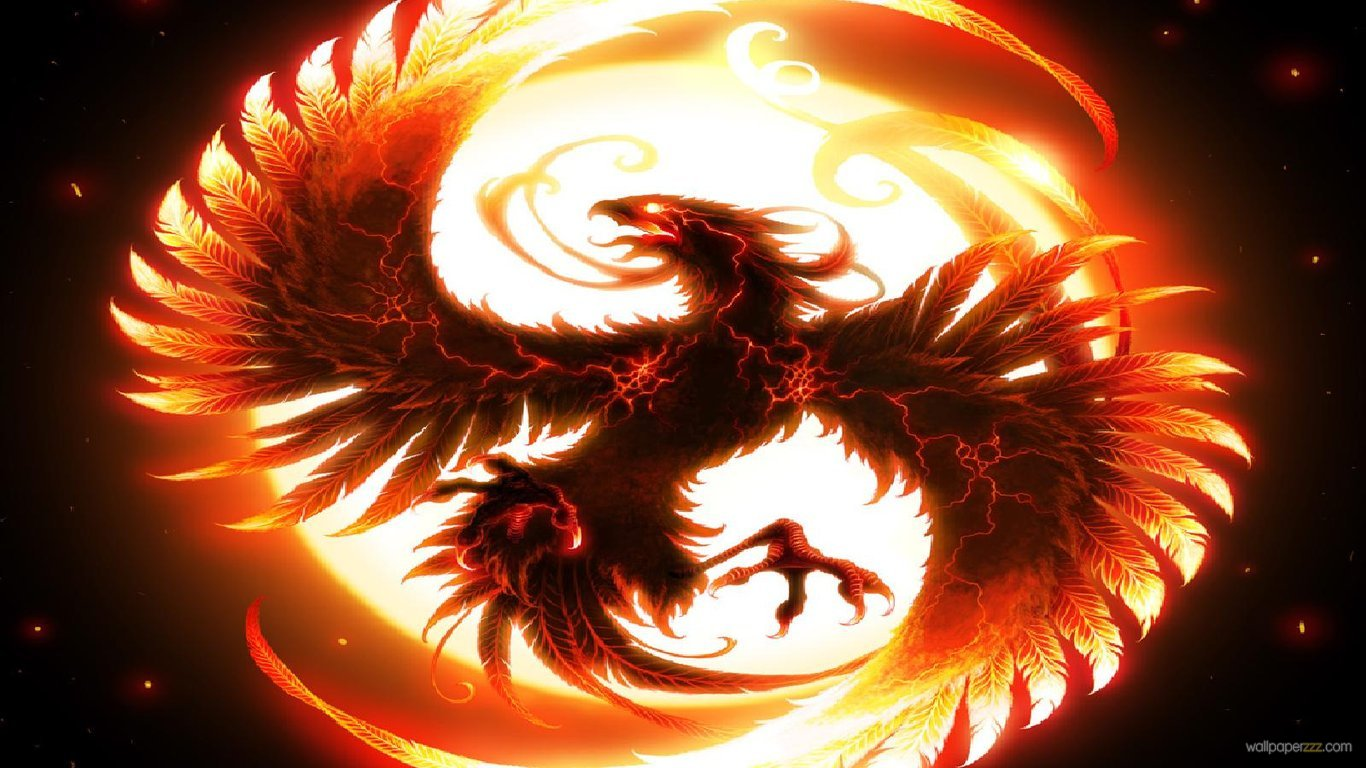 Download Dragon HD Wallpaper Wallpaper 1366x768