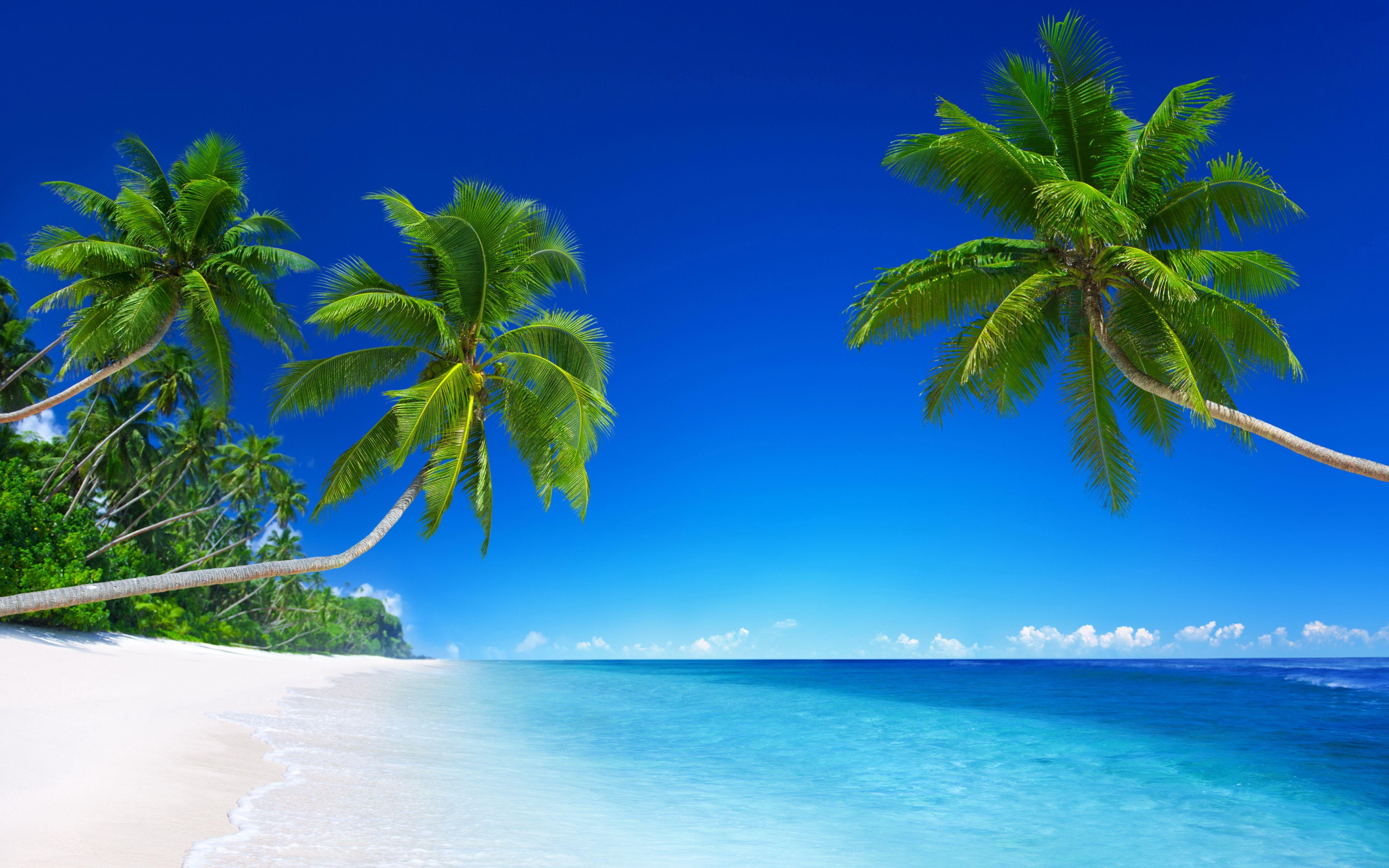 Beach Scenes Desktop Wallpapers   Top Beach Scenes Desktop 5120x3200