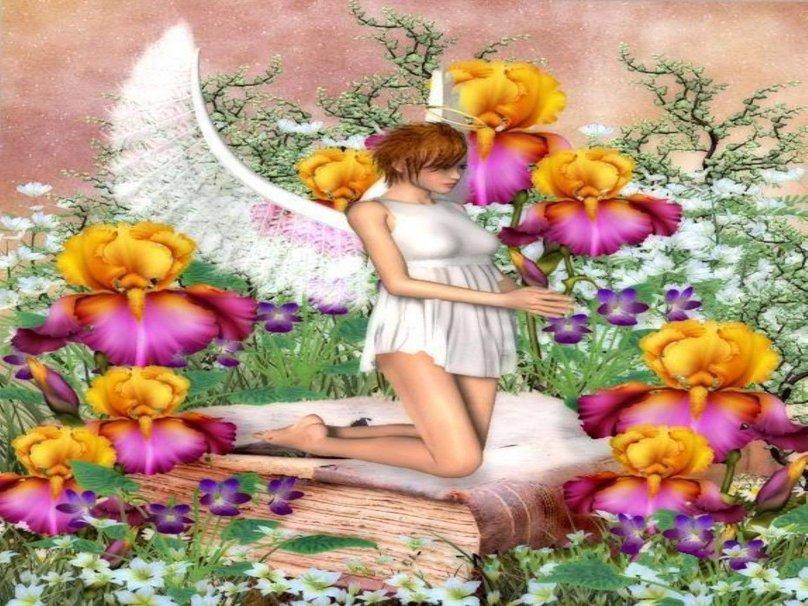 Fairy Garden Wallpaper Wallpapersafari