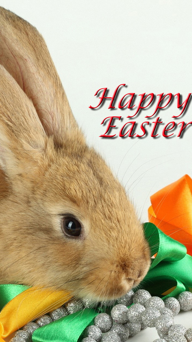 Cute Easter Bunny Wallpaper download lovely easter 640x1136