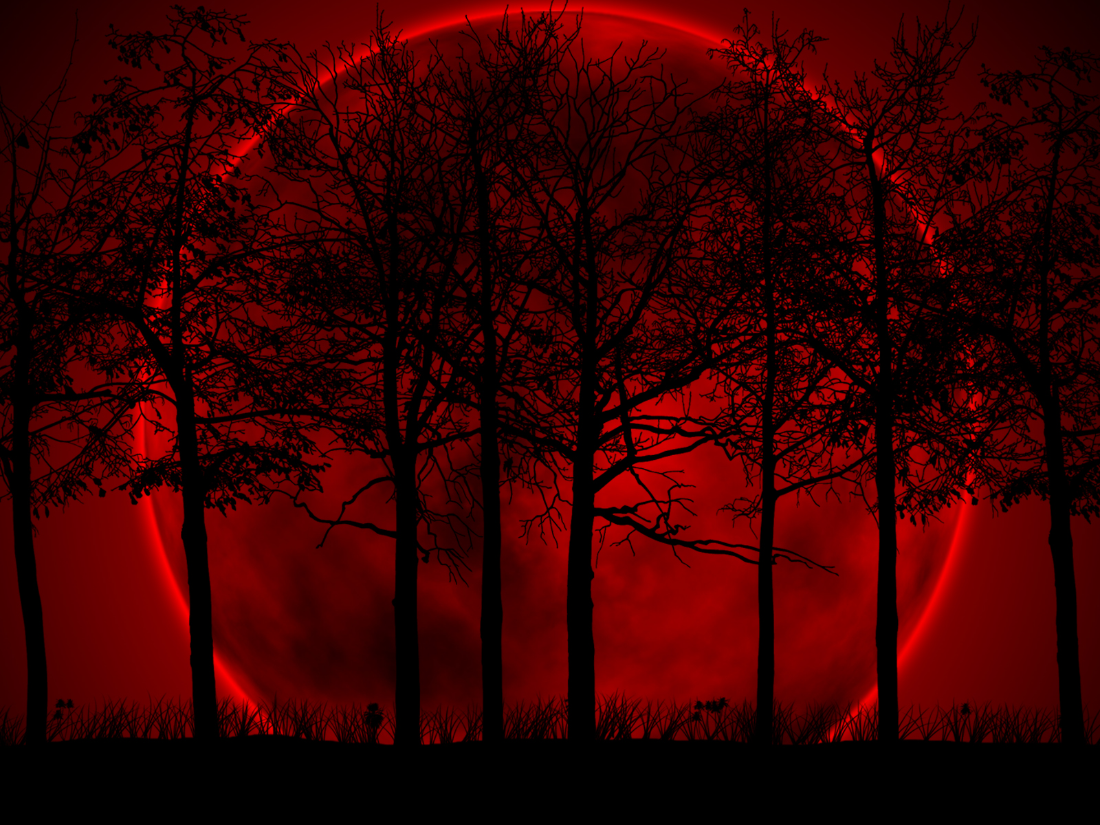 Wallpaper 34 Moon forest Red and Black Wallpapers 1600x1200
