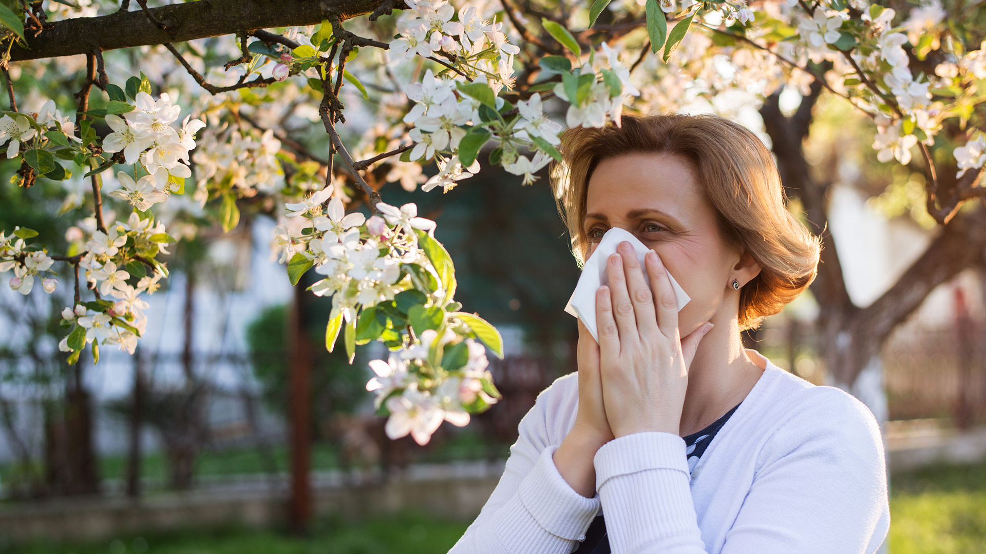 Daily Dose   The Spring Allergy Facts You Need Right Now 1920x1080
