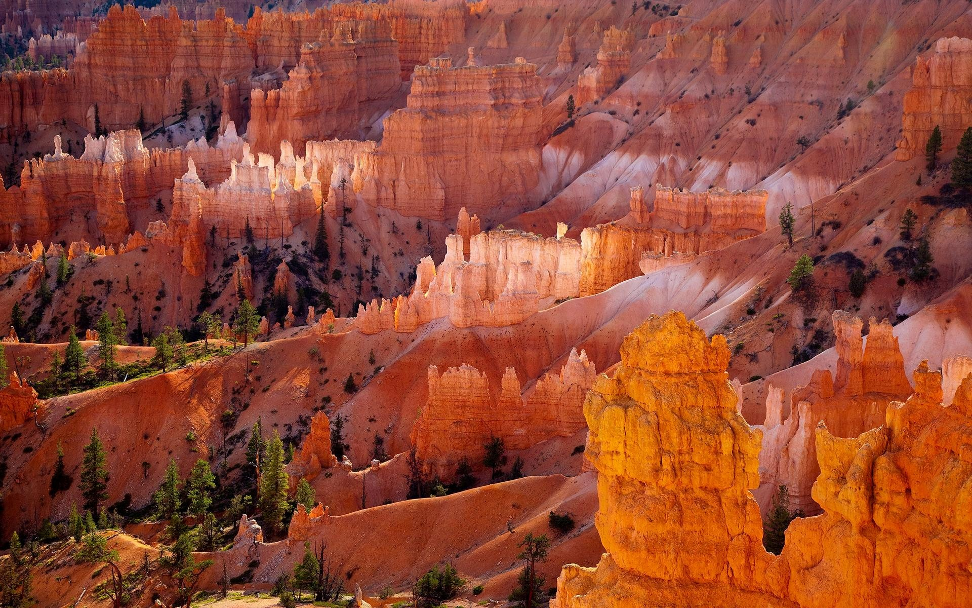 Bryce Canyon National Park HD Wallpapers 1920x1200