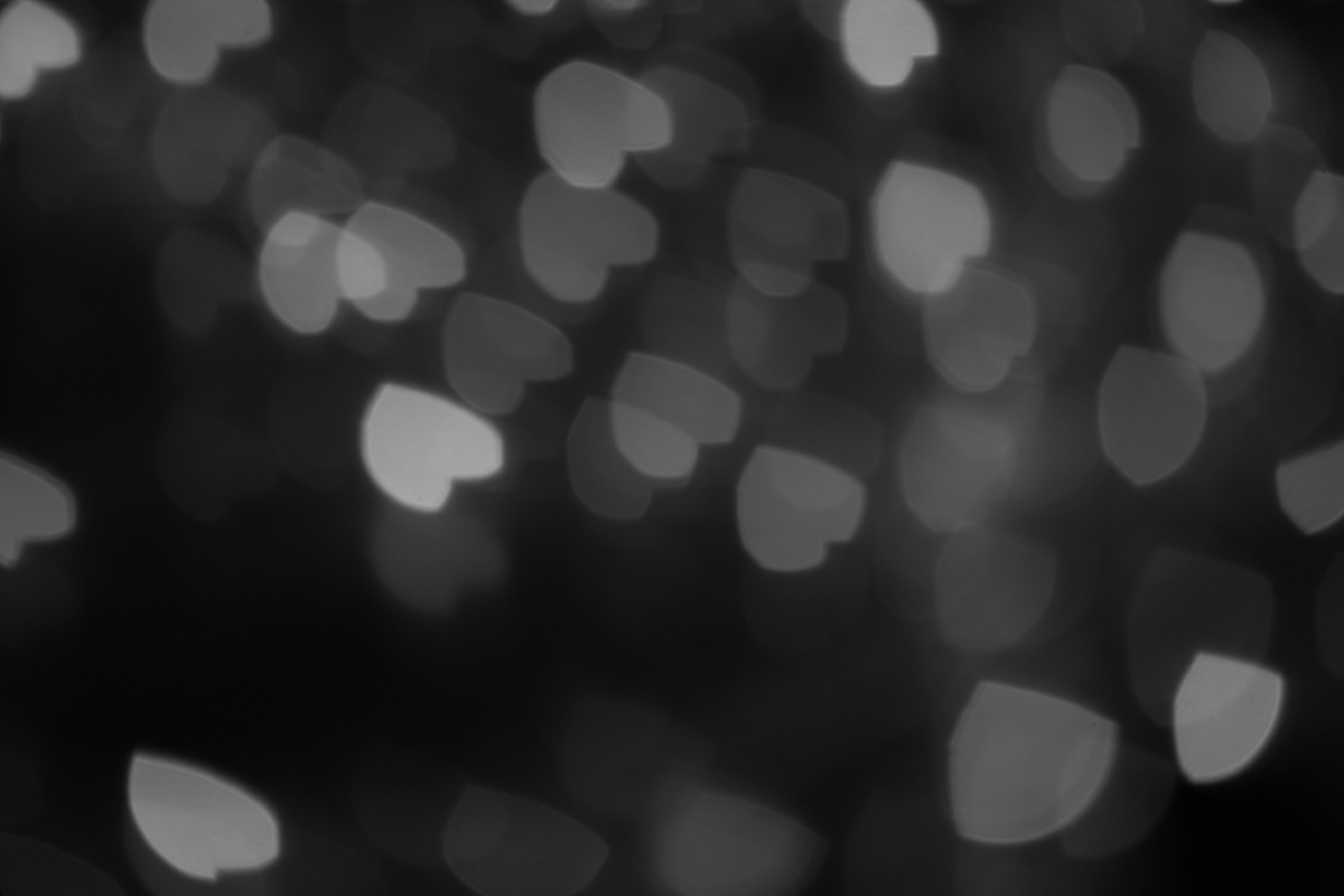 [63+] Black And White Heart Background on WallpaperSafari