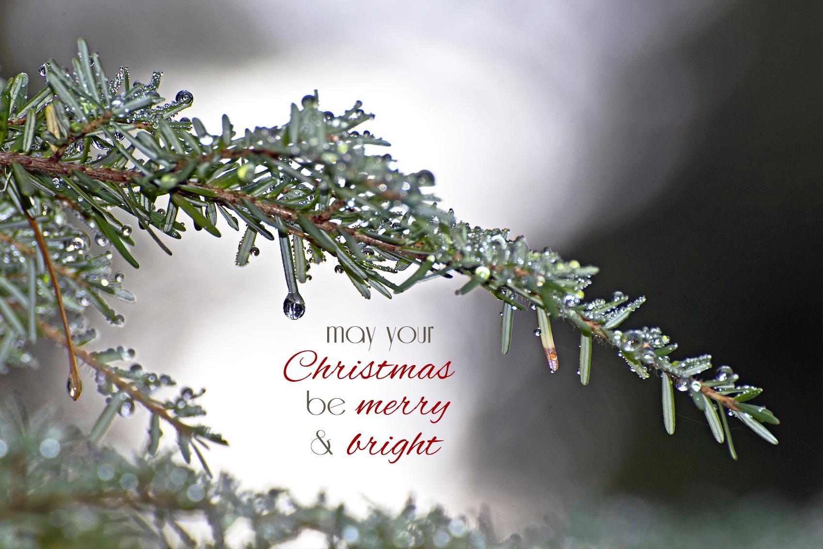 Merry bright desktop background 101 Days of Christmas Life 1698x1132