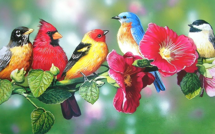 Birds on Spring Branch   Pretty Bird Art Beautiful Bird Spring 700x437