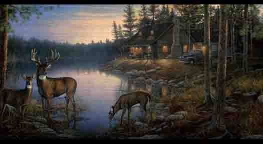 Deer Forest Scene Wallpaper Border WD4100B   Wallpaper Border 525x288