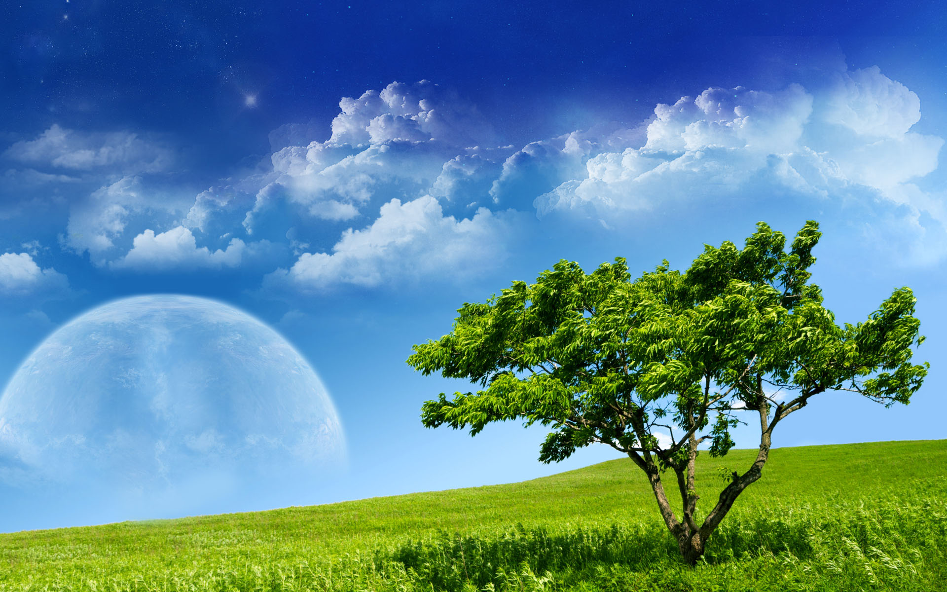 Beautiful Sky Moon in Spring HD Wallpaper Nature Wallpapers 1920x1200
