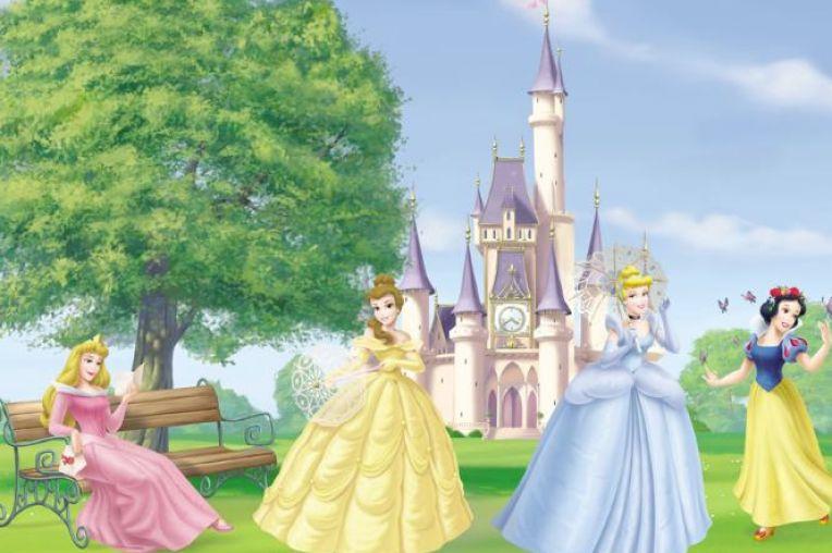 Disney princess castle wallpaper pictures 2 764x508