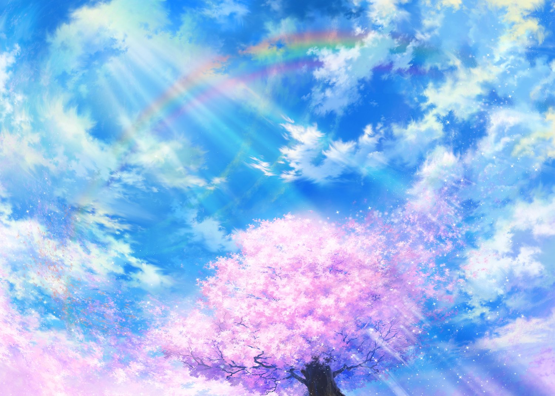 Cherry Blossoms   Blooming Sakura cherry tree wallpaper 1500x1070