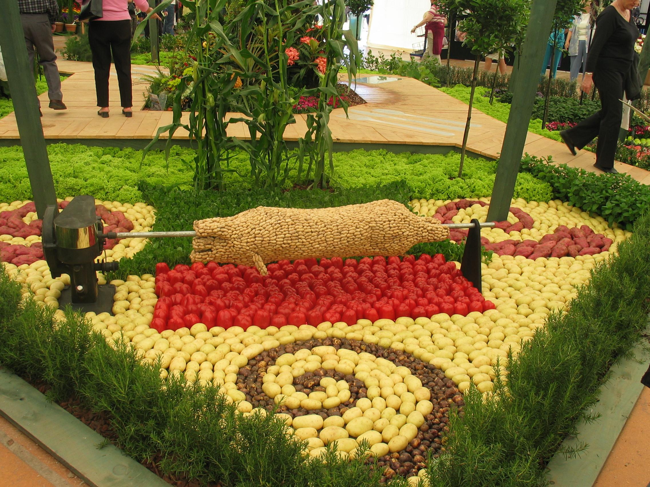 vegetables wallpaper vegetable garden basics wallpaper vegetable 2272x1704