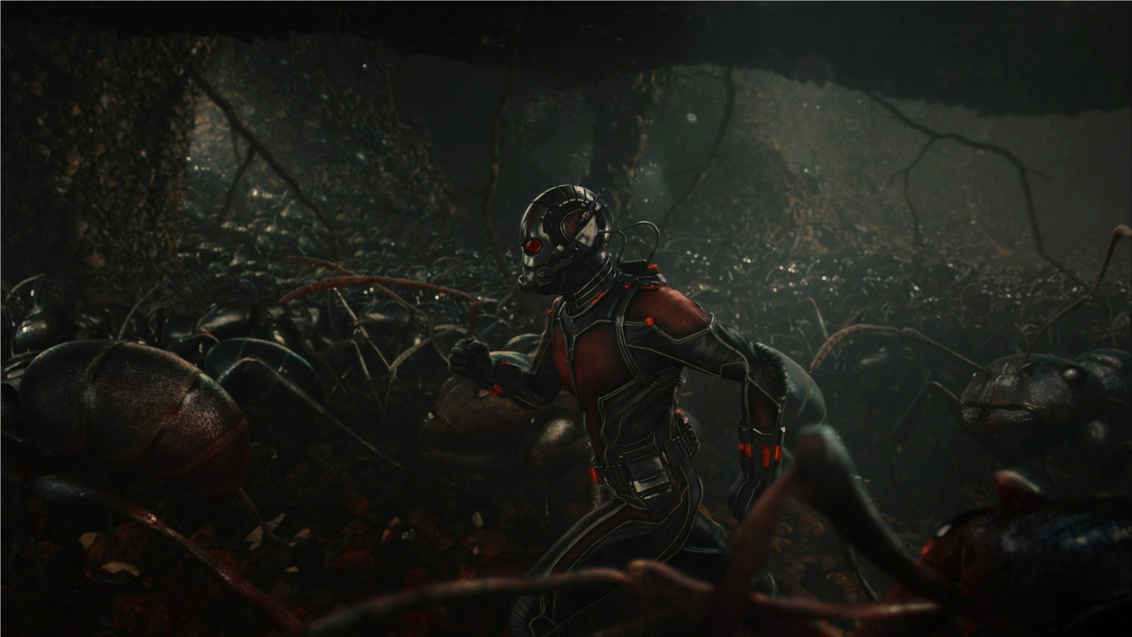 Ant Man With Ants Wallpapers   1600x900   304165 1600x900