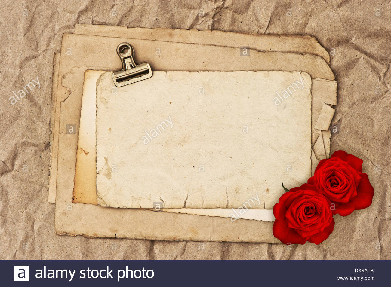 old blank paper and two rose flowers grunge vintage background 1300x955