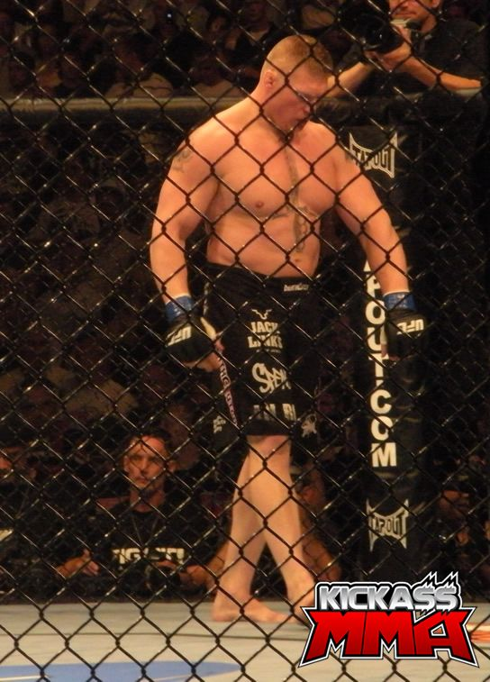lesnar ufc champion wallpaper brock lesnar wallpaper mma wallpaper 544x757
