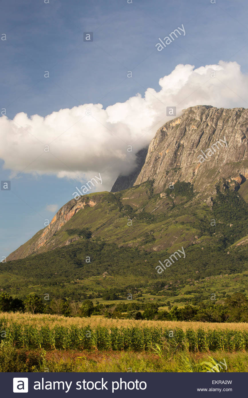Mulanje Mountain Stock Photos Mulanje Mountain Stock Images   Alamy 866x1390