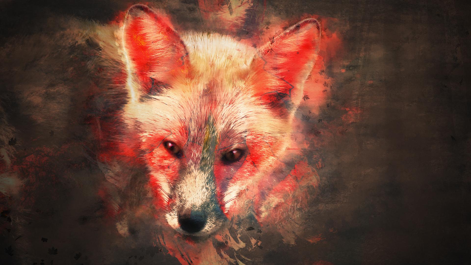 wallpaper fox art wallpapersafari fox racing logo fabric fox racing logos for free