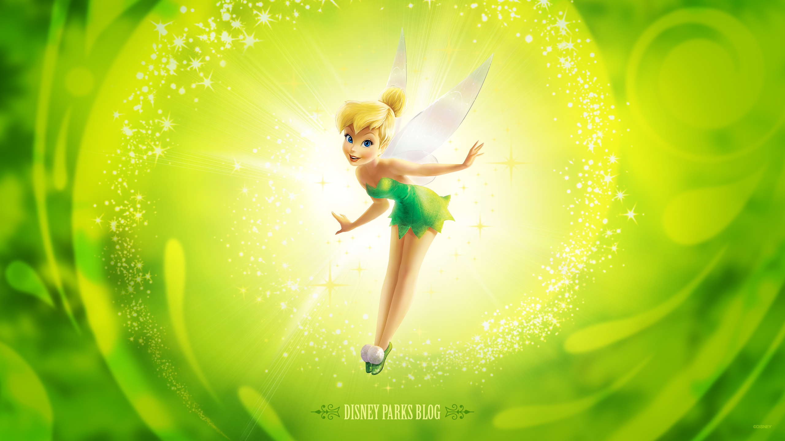 Tinker Bell Wallpaper Inspired by Tinker Bell Half Marathon Weekend at 2560x1440