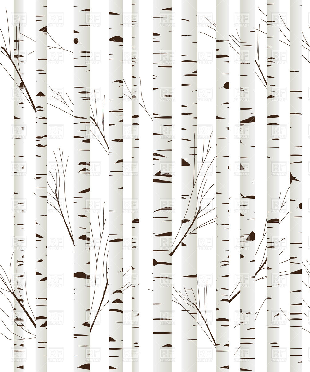 Birch wood trees background download royalty free vector clipart EPS 1000x1200