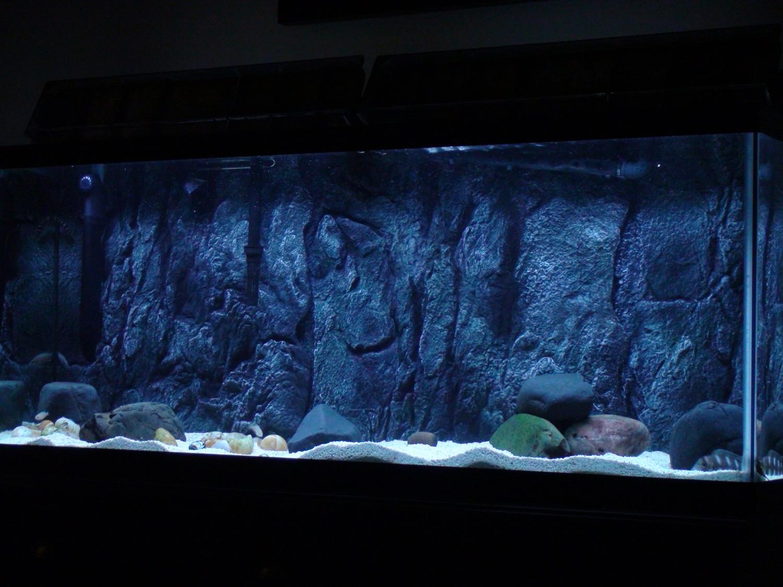 Pictures Images and Photos Diy Aquarium 3d Backgrounds For Fish 1500x1125