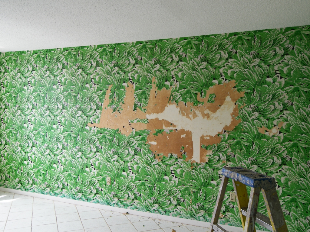 Free Download Painting Inc Professional Wallpaper Removal