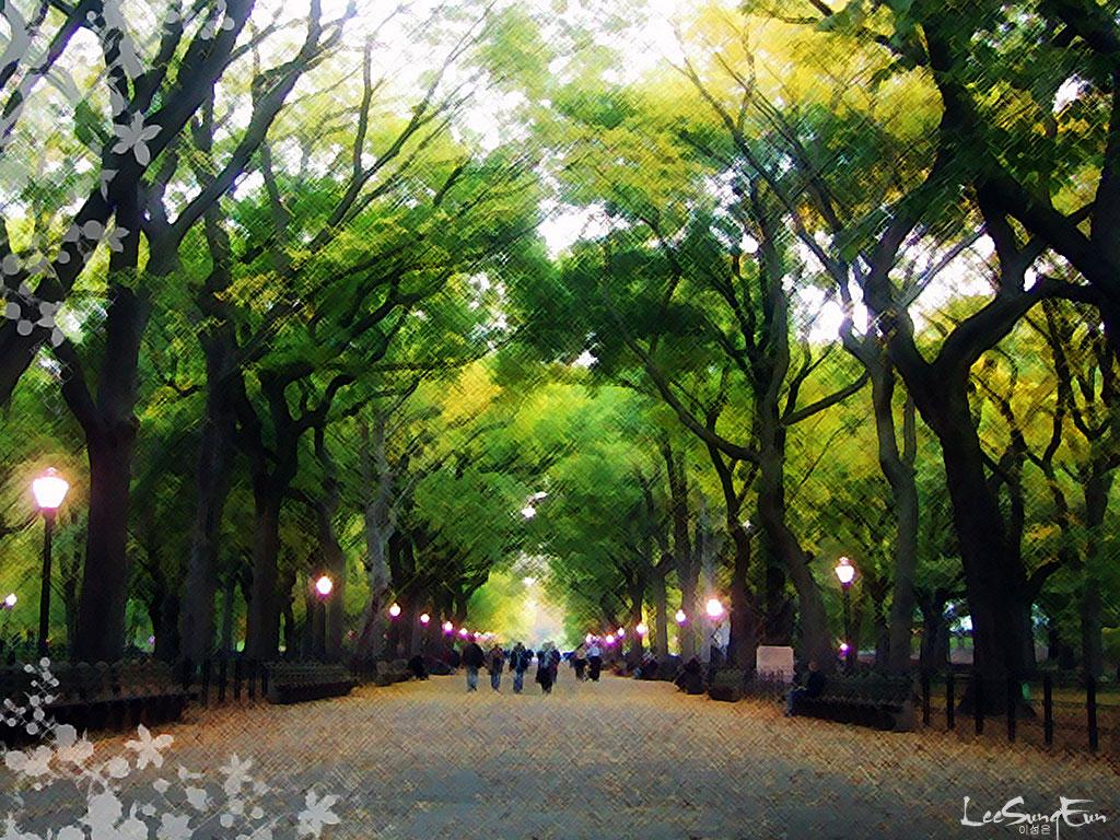 New York Central Park HD Wallpaper   PhotosJunction 1024x768