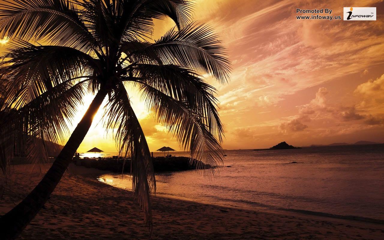 Summer scenery wallpaper desktop wallpapersafari - Wallpapers 1280x800 nature ...