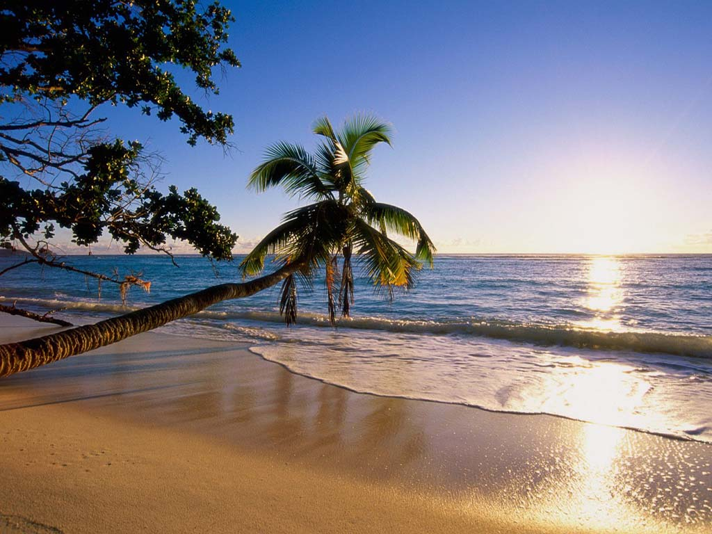3d Beach Wallpaper - WallpaperSafari