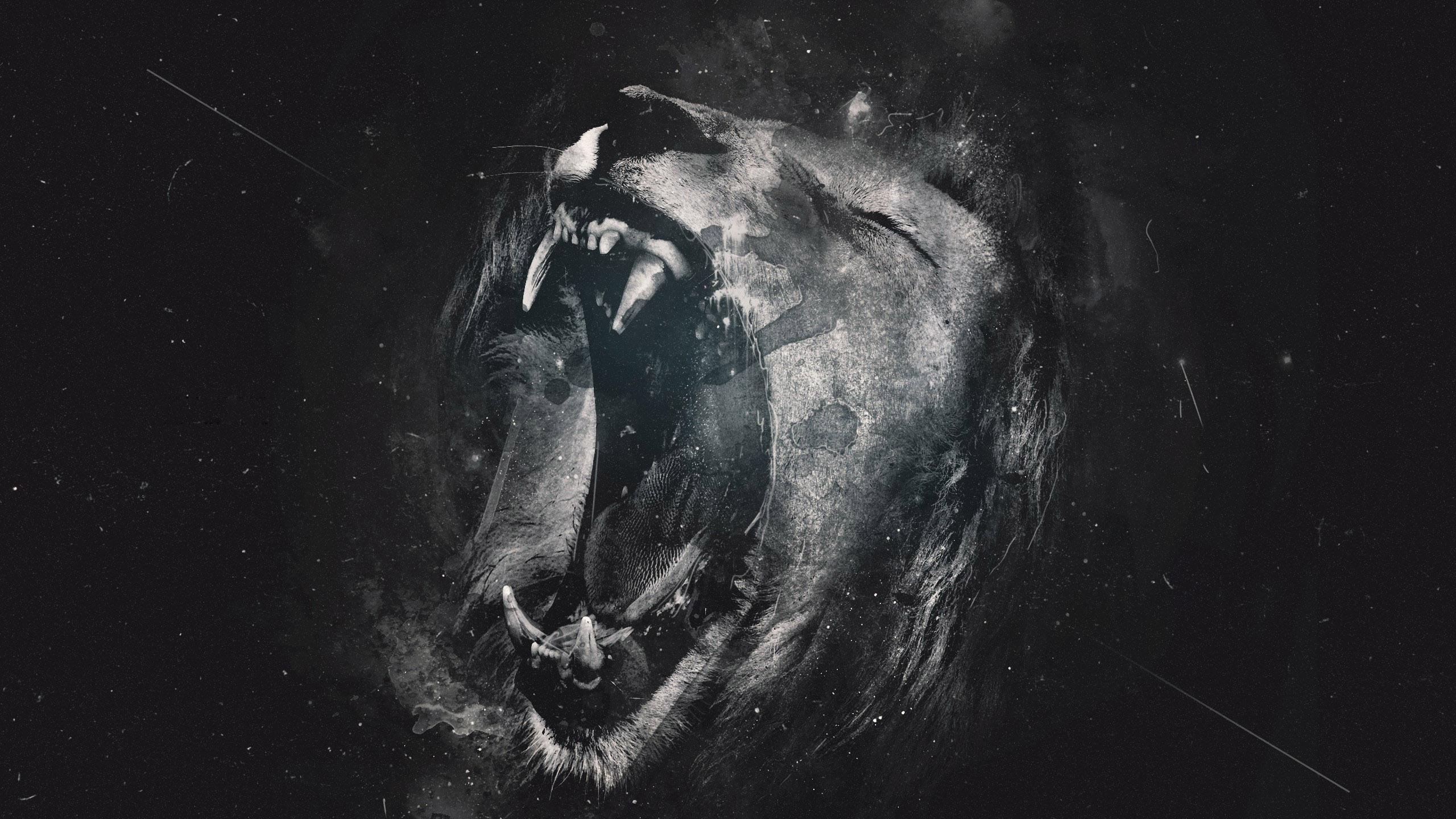Lion Roar Wallpapers Wallpapersafari