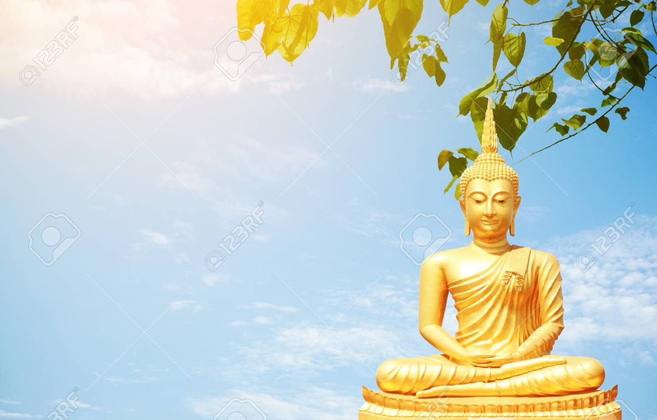 The Golden Buddha Statues Sitting Under Bo Leaf And Bluesky 1300x832