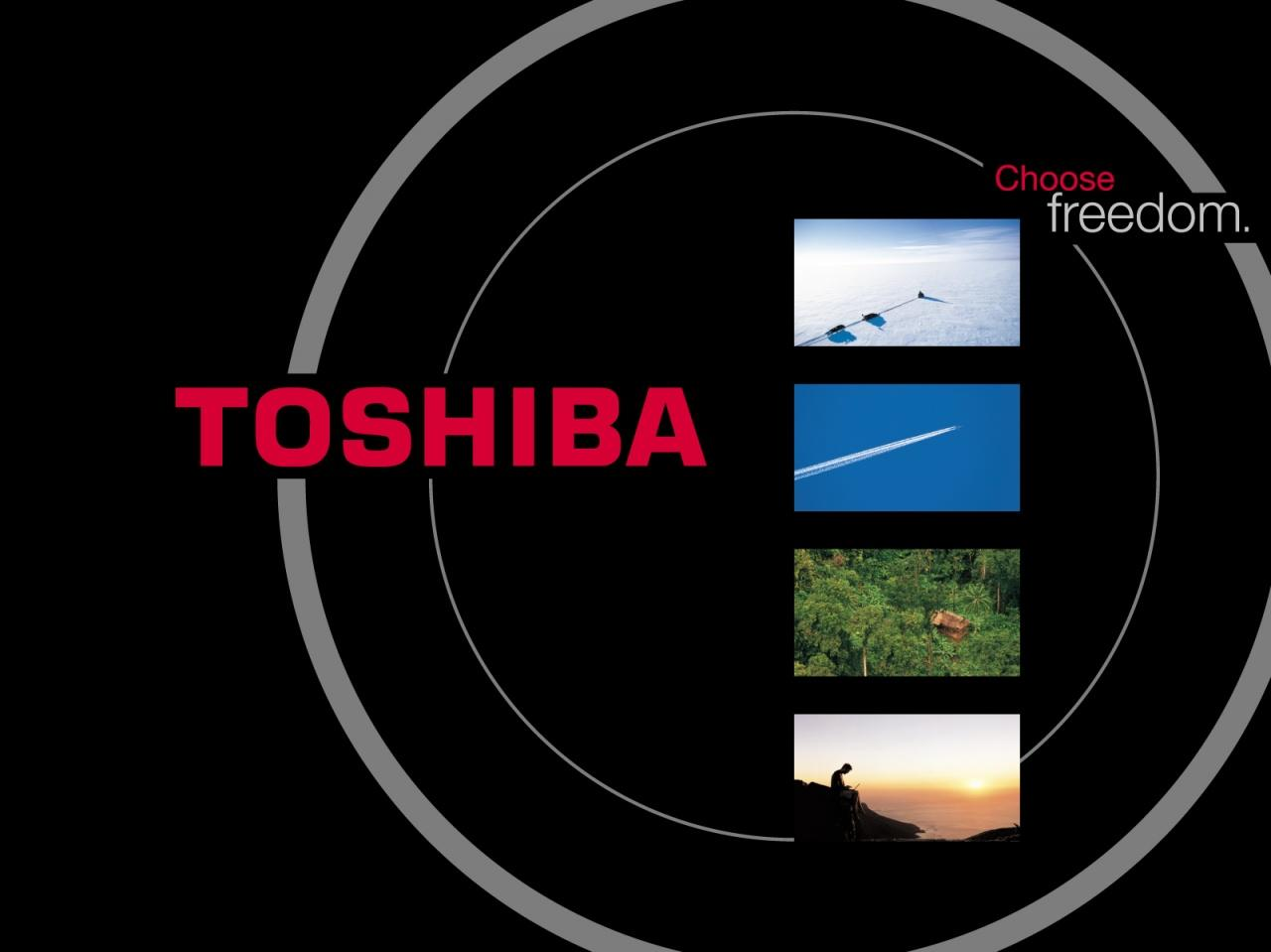 Pin Toshiba Wallpaper Download Windows Vista Floral Blue 1280x959