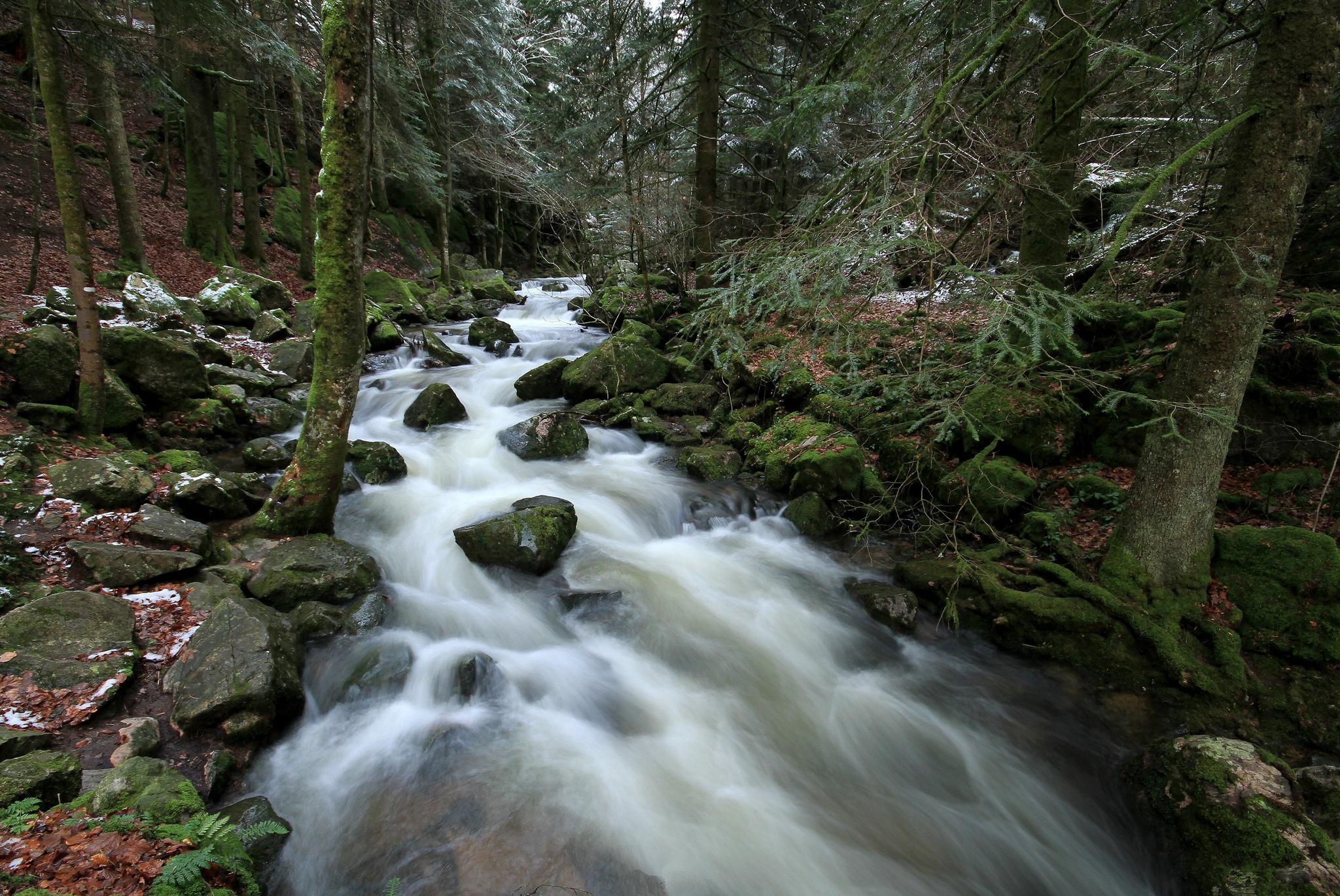 River forest rocks wallpaper 2048x1370 117181 WallpaperUP 2048x1370