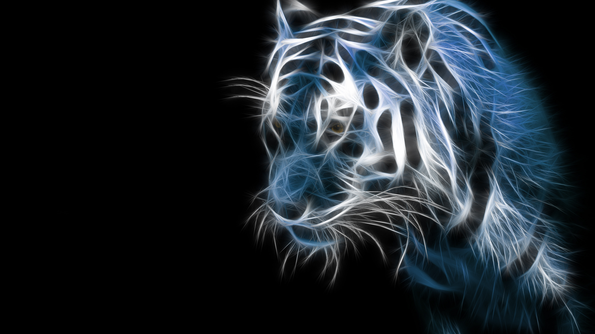 Download Tiger Animal Wallpaper 1920x1080 Full HD Wallpapers 1920x1080