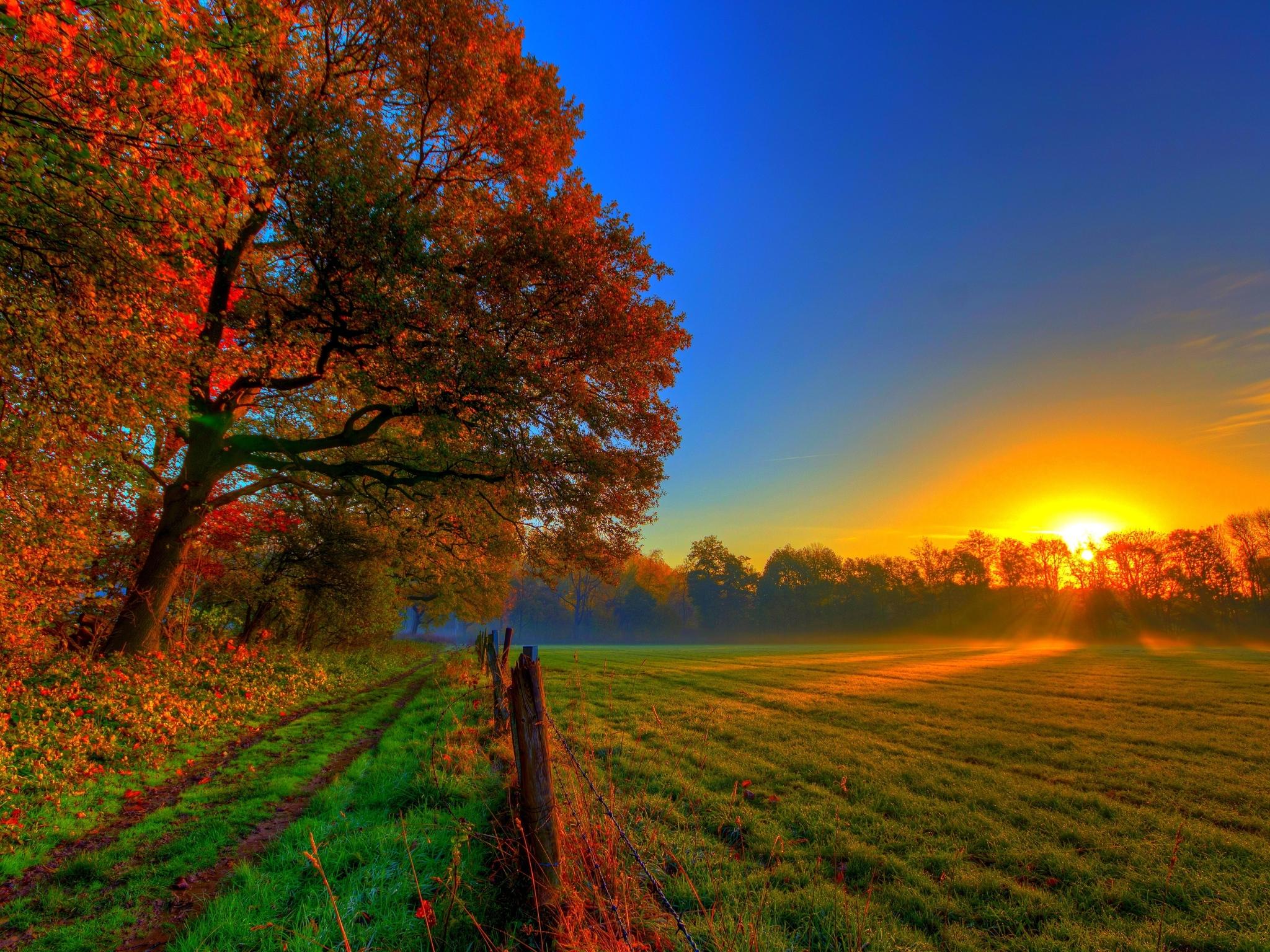 Autumn field 4K Ultra HD wallpaper 4k WallpaperNet 2048x1536