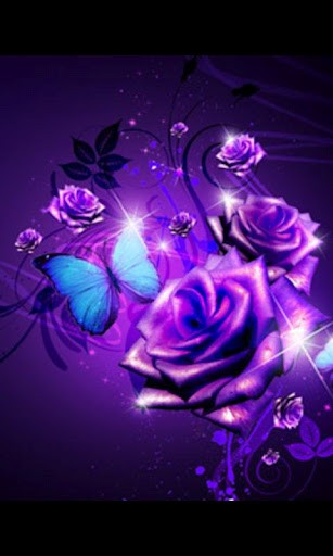 Download Purple Roses Live Wallpaper 1 for Android   Appszoom 307x512